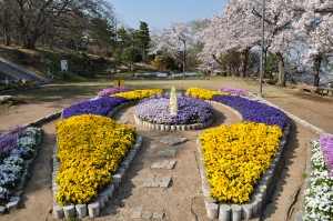 神峰公園頂上の遊園地の奥にある花壇