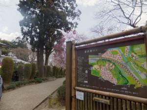 梅の芳香と歴史の景勝地 偕楽園