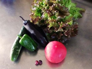 今年の野菜たち