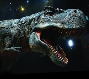 ティラノサウルス!!!!